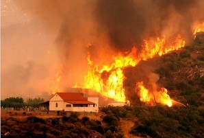 *Building in a Bushfire area